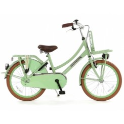 Kinderfiets Popal Daily Dutch Basic Transporter 20 inch Pistache